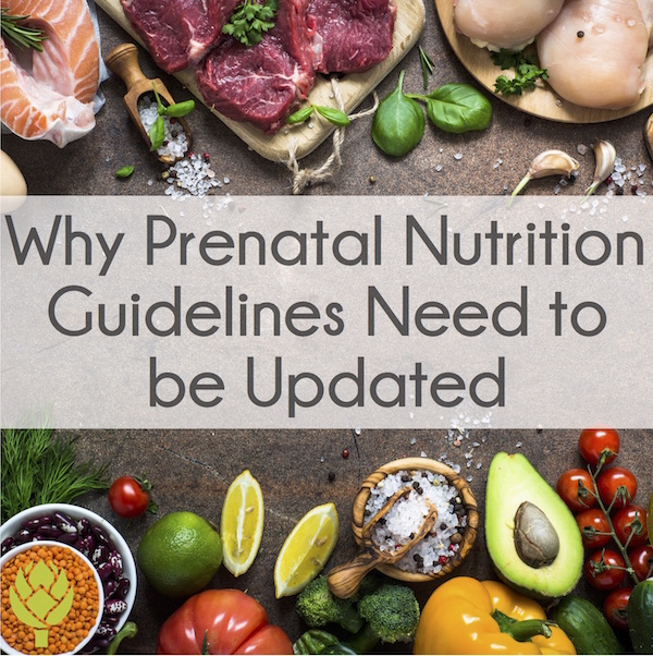 Why Prenatal Nutrition Guidelines Need to be Updated